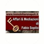 Agenzia Immobiliarenapoli.it